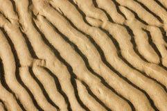 湿的沙子 免版税图库摄影
