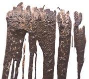 湿的泥 免版税库存照片
