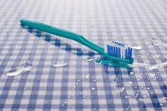 湿的牙刷 图库摄影