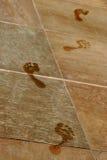 湿的脚印 免版税库存照片