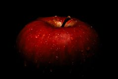 湿的苹果 免版税库存图片