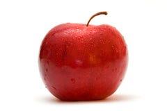 湿的苹果 库存图片
