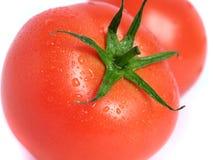 湿的蕃茄 库存图片