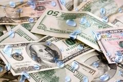 湿的货币 库存图片