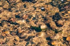 湿石头和海藻在水下在小河 库存照片