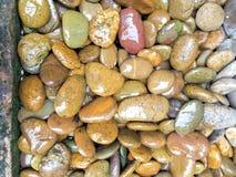 湿石头 免版税库存图片