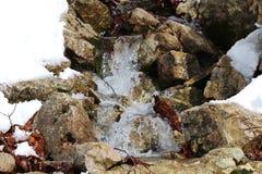 湿石头 库存照片