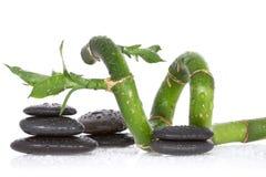 湿竹子和小卵石 免版税库存照片