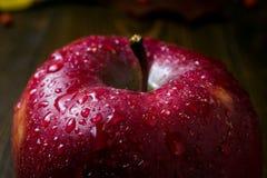 湿红色美味苹果特写镜头,新鲜的水多的红色苹果,接近的u 免版税库存照片