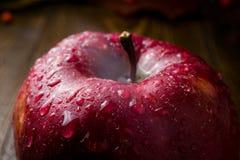 湿红色美味苹果特写镜头,新鲜的水多的红色苹果,接近的u 库存照片