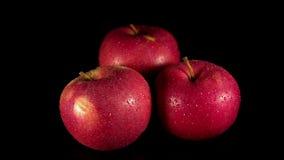 湿红色苹果打开黑背景 影视素材