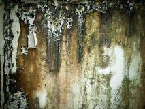 湿老粗砺的墙壁 库存照片