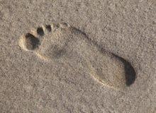 湿脚印的沙子 图库摄影