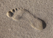 湿脚印的沙子 免版税库存照片
