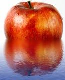 湿苹果的红潮 库存照片