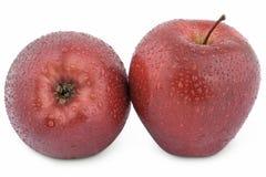 湿苹果的红色二 免版税库存照片