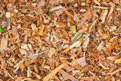 湿锯木屑背景  免版税库存照片