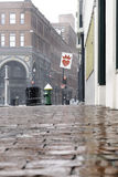 湿雪落 免版税库存照片