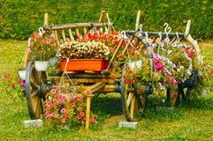 溢出与红色花的老木推车 免版税库存照片