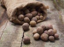 溢出在一个粗麻布袋外面的土豆,在roug 免版税库存照片