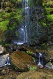 溢出在青苔和岩石, Goathland的Mallyan喷口瀑布的细节 图库摄影