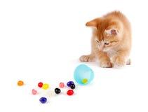 溢出软心豆粒糖的逗人喜爱的橙色小猫在塑料复活节外面 免版税库存图片