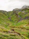 溪在新鲜的阿尔卑斯草甸,阿尔卑斯多雪的山峰在背景中 在山的冷的有薄雾和多雨天气在秋天结束时 免版税库存图片