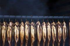 溪鱼抽烟的鳟鱼 免版税库存照片