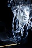 溶化入烟 向量例证