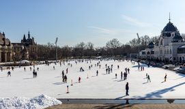滑冰场的滑冰的人在Varosliget在晴天停放 冬季体育和放松 库存图片