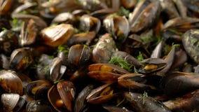 滑在海淡菜烹调用草本 股票录像