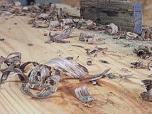 滑木头 图库摄影