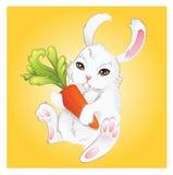 滑稽兔宝宝的红萝卜 库存图片