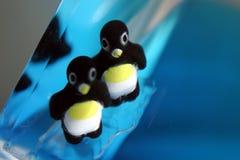 滑稽动作企鹅 库存图片