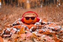 滑稽的万圣节 在太阳镜的南瓜在秋天公园 免版税库存图片