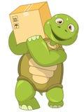 滑稽的乌龟工作者 免版税库存图片