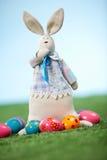 滑稽的兔宝宝 免版税库存照片