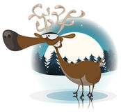 滑稽的圣诞节驯鹿 库存图片