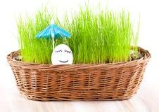 滑稽的微笑的妇女鸡蛋在篮子的伞下与草。 星期日浴。 免版税库存照片