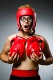 滑稽的拳击手反对 库存图片