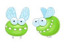 滑稽的昆虫 免版税库存图片