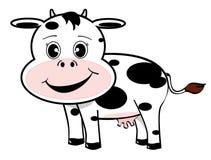 滑稽的母牛 库存图片