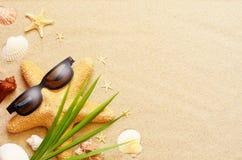 滑稽的海星和贝壳在夏天靠岸与沙子 库存照片