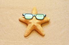 滑稽的海星在夏天靠岸与沙子 库存照片