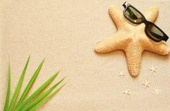 滑稽的海星在夏天靠岸与沙子 免版税库存照片