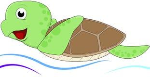 滑稽的海龟 免版税库存照片