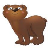 滑稽的熊 免版税库存照片