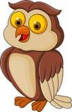 滑稽的猫头鹰动画片 库存图片