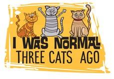 滑稽的猫设计 免版税图库摄影