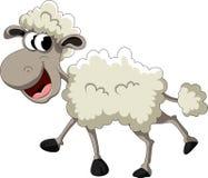 滑稽的绵羊动画片 免版税库存图片